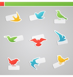 Set of multicolored birds with tags vector