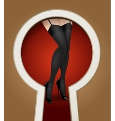 Legs in stockings through a key hole vector