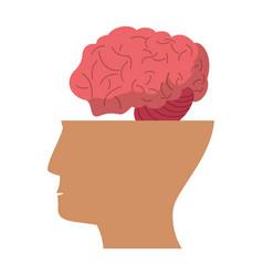 human head brain idea icon vector image