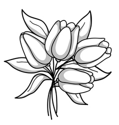Monochrome bouquet of tulips black white gray vector