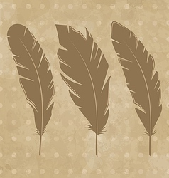 Set vintage feathers vector