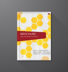 Book cover hex vector
