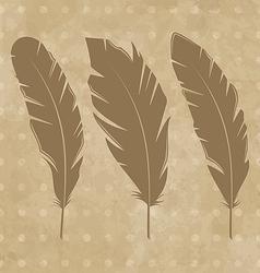 Set vintage feathers vector