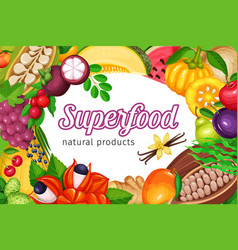 superfood fruits and beries vector image vector image