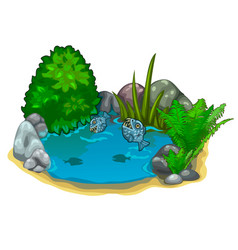 pond with predatory piranhas plants and stones vector image