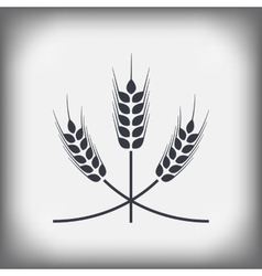 Spikelets of wheat vector