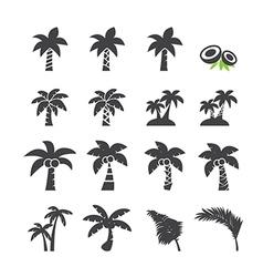Coconut tree icon vector