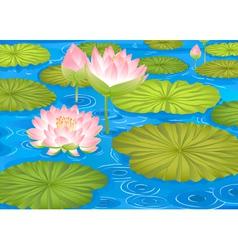 lotus flowers in pond vector image vector image