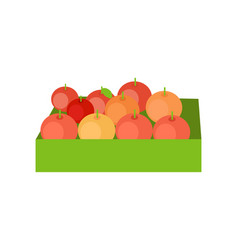 red apples in a box vector image