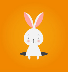bunny in hole on orange background vector image vector image