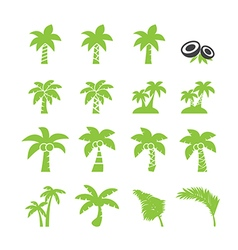 Coconut tree icon vector