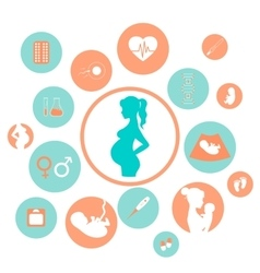 Medicine and pregnancy icons set vector image