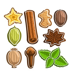 Set icons for culinary spices vector