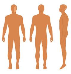 Fashion body full length bald template figure vector