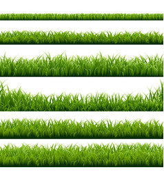Big set green grass borders vector