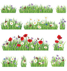 Nature floral collection grass background set vector