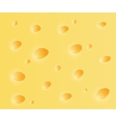 Cheese background vector