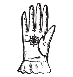 Georgian glove vintage engraving vector