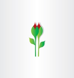 Carnation flower design element vector