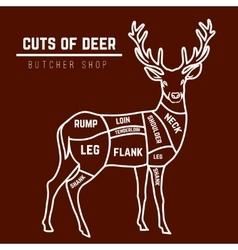 Deer meat cuts in color vector