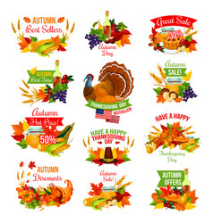 Thanksgiving autumn isolated sale icons vector