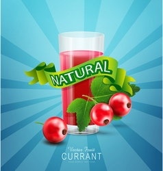 Blue background with red currants fresh juice vector