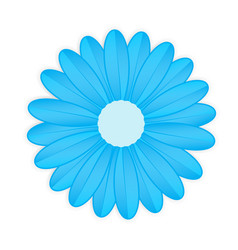 blue flower on white background vector image vector image