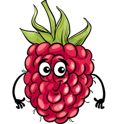 Funny raspberry fruit cartoon vector