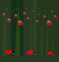 ladybugs2 vector image vector image