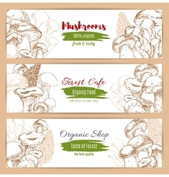 Mushrooms organic shop sketch banners vector image