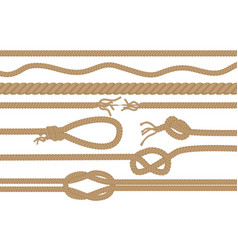 rope brushes with different knots set vector image