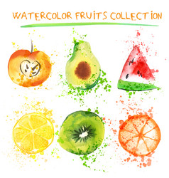 set of fresh fruit watercolor objects vector image vector image