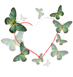 Heart of butterflies on white background vector