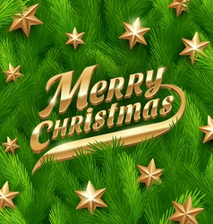 Golden Christmas greeting and stars vector image