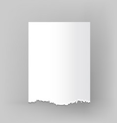 blank sheet of torn paper on grey vector image