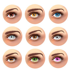 colorful eyes with different pupils set vector image
