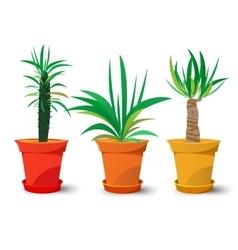 Three pots with plants vector