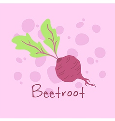 Vegetable Beetroot vector image