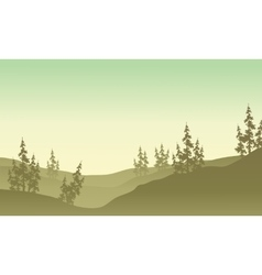 Silhouette of spruce in fields scenery vector