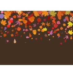 Falling multicolor autumn leaves EPS 8 vector image