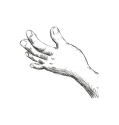 Sketch hand icon gesture hand design vector