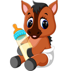 cute baby horse cartoon vector image vector image