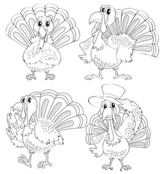 doodle animal outline of turkey in four actions vector image
