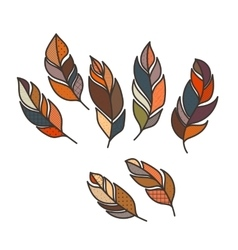Set of ornate intricate feather doodle vector