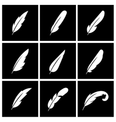 feather on black background vector image vector image