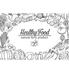 template with hand drawn vegetables vector image