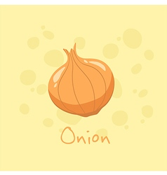 Onion vegetable vector