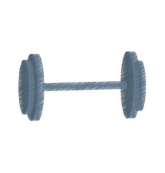 Dumbbell or barbell weights icon image vector