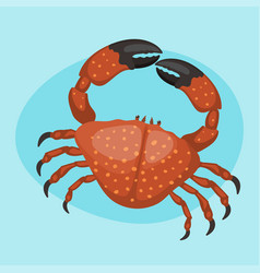 Cartoon crab flat fresh vector
