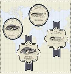 Fish label vector
